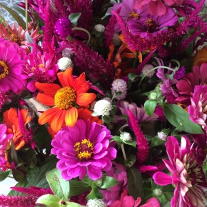 Weekly flower delivery from Small City Farm - just 10 minutes from uptown.